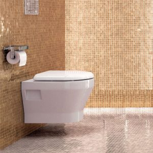 Curve wall hung WC by Britton